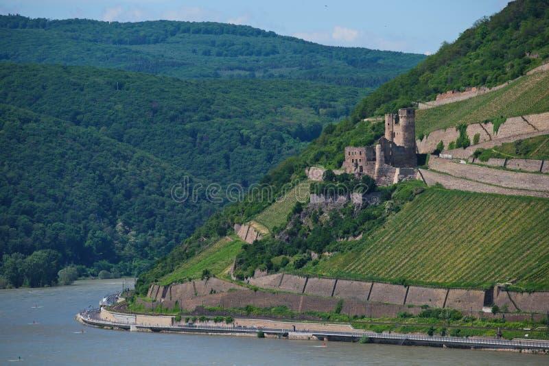 在Rüdesheim附近的老废墟城镇厄棱费尔 免版税库存图片