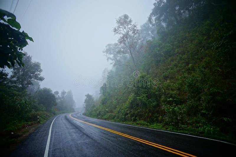 在rainny季节的路 库存图片