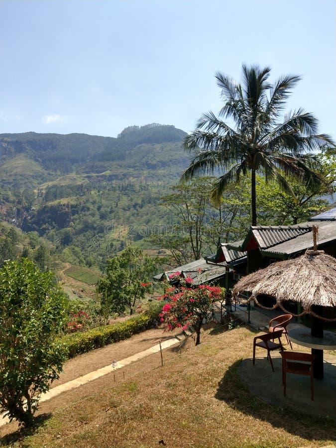 在Ramboda秋天附近的大阳台在斯里兰卡 免版税库存照片