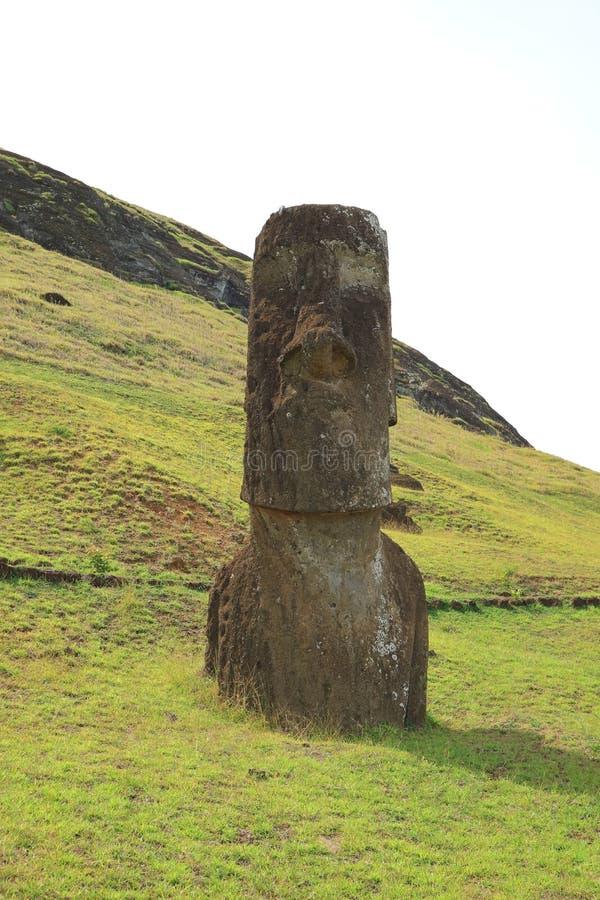 在Rano Raraku火山倾斜的许多被放弃的巨大的Moai雕象之一,智利考古学站点复活节岛  免版税库存图片