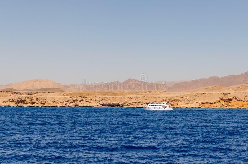 在Ras穆罕默德的自然保护的背景的白色游船 图库摄影