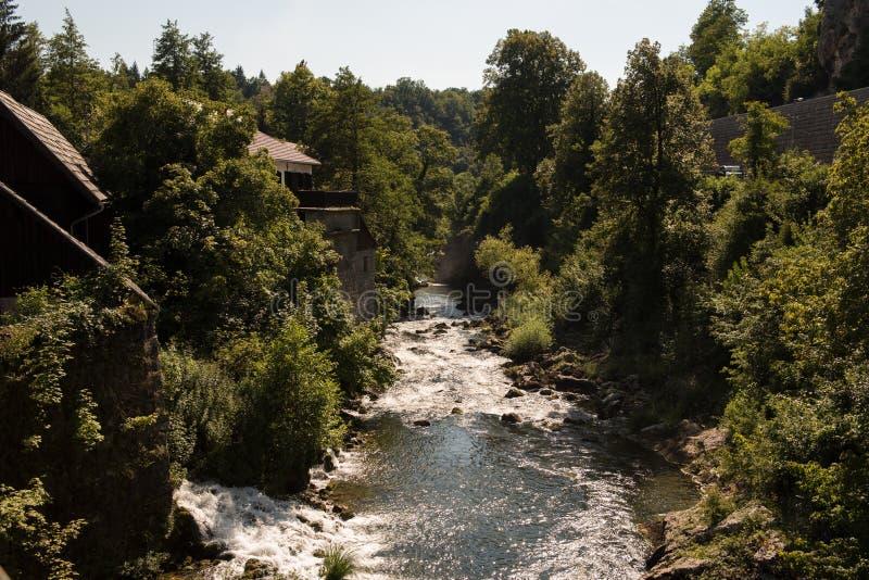 在Rastoke附近村庄的河Korana在斯卢尼附近的在克罗地亚 高大的树木 免版税库存照片
