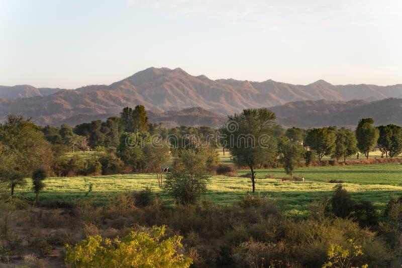 在sadri镇附近的自然视图 免版税库存图片