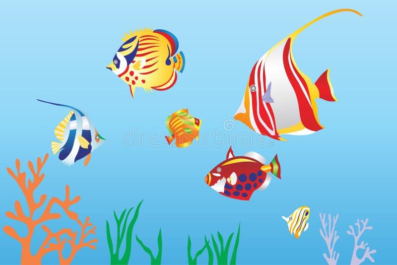 在sae下的鱼 库存例证
