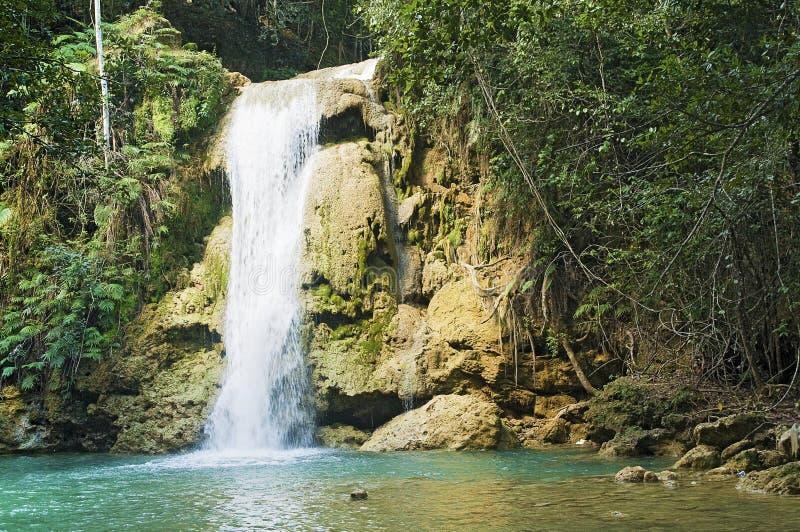 Limon瀑布,多米尼加共和国 免版税库存照片