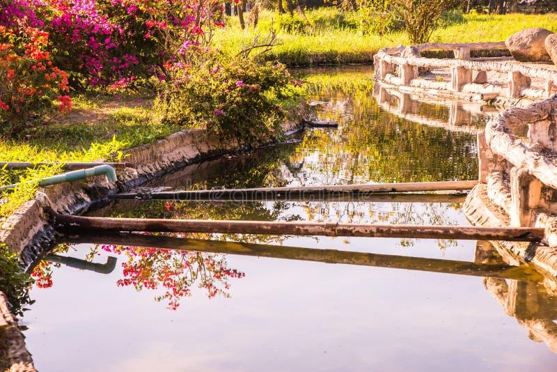 在Sankamphaeng温泉的热水运河 库存图片