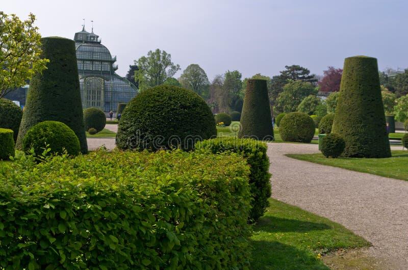 在Schenbrunn公园里面的植物雕塑在维也纳 图库摄影