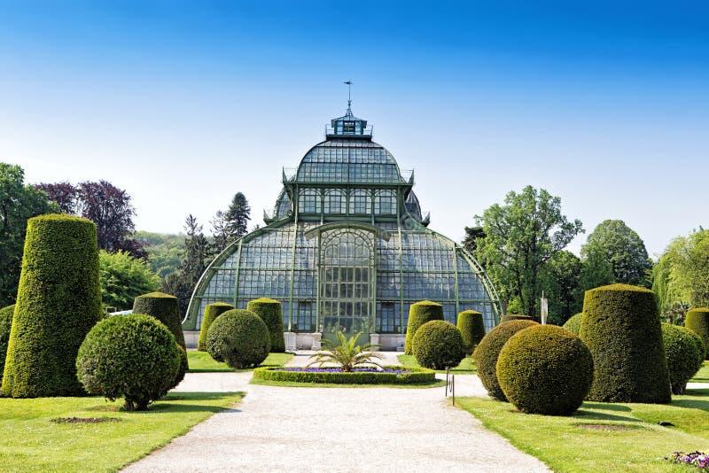 在Schonbrunn宫殿附近的植物园在维也纳 库存照片