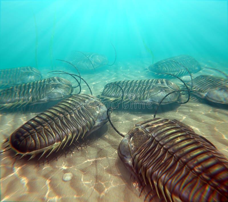 在Seabottom的Trilobites换气 皇族释放例证