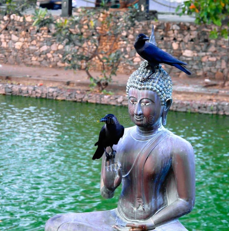 在Seema Malaka寺庙,科伦坡,斯里兰卡的菩萨雕象 免版税库存照片
