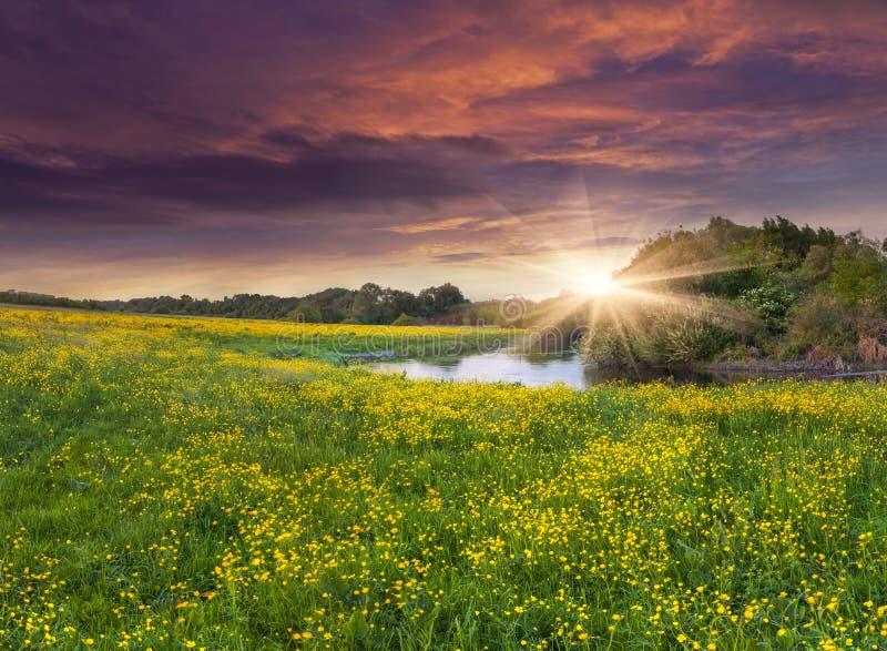 在siver的五颜六色的春天风景 库存图片