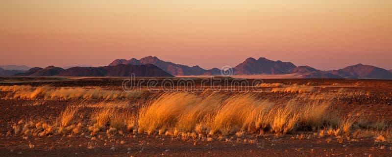 在sossusvlei日出附近的沙漠 库存照片