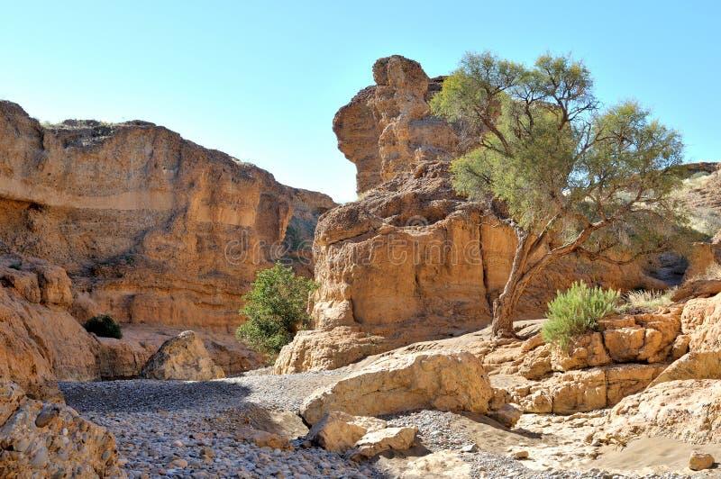 在Sossusvlei附近的Sesriem峡谷。纳米比亚 免版税库存图片