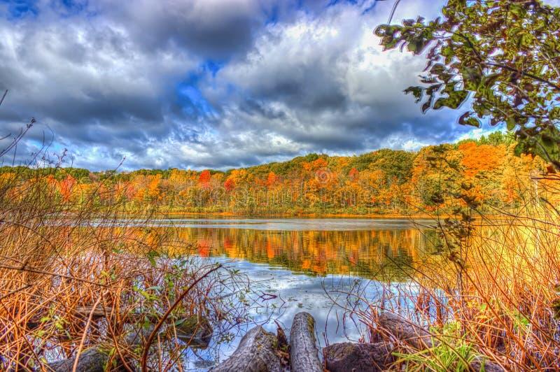 在Spettigue池塘的秋天颜色 免版税库存照片