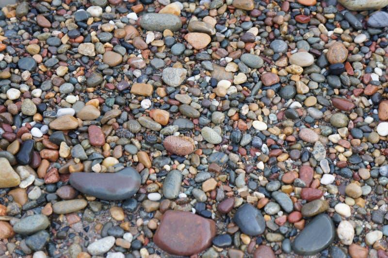 在Stoney海滩的小卵石 库存图片