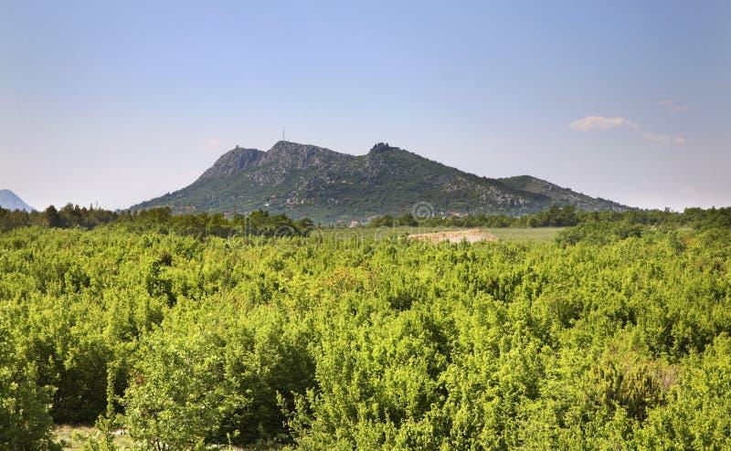 在Studenci附近的风景 达成协议波斯尼亚夹子色的greyed黑塞哥维那包括专业的区区映射路径替补被遮蔽的状态周围的领土对都市植被 免版税库存图片