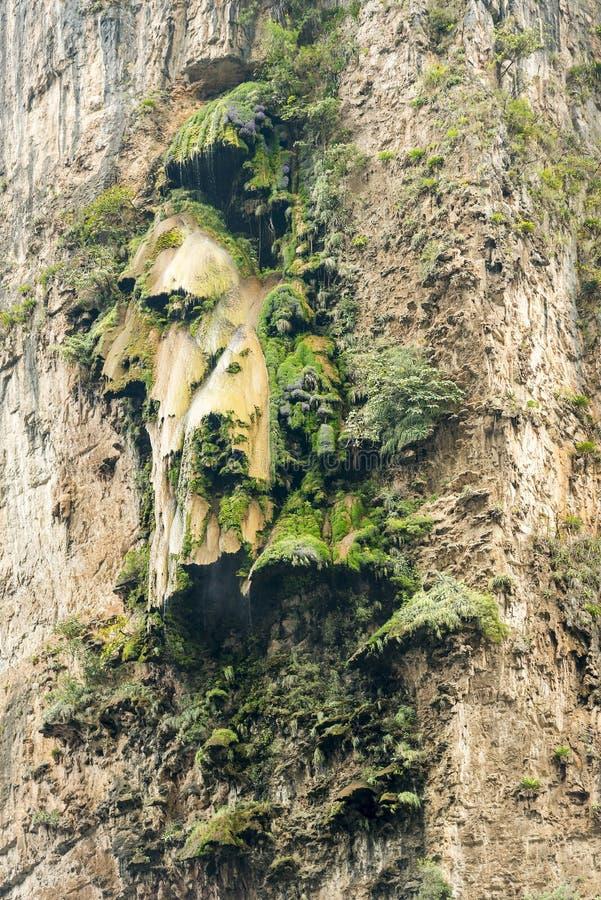 在Sumidero峡谷的圣诞树瀑布 免版税库存图片