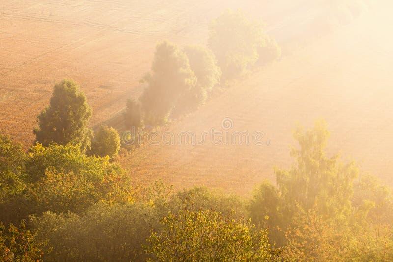 Download 在sunrice的领域 库存照片. 图片 包括有 薄雾, 剪影, 秋天, 有雾, beauvoir, 平安 - 59111974