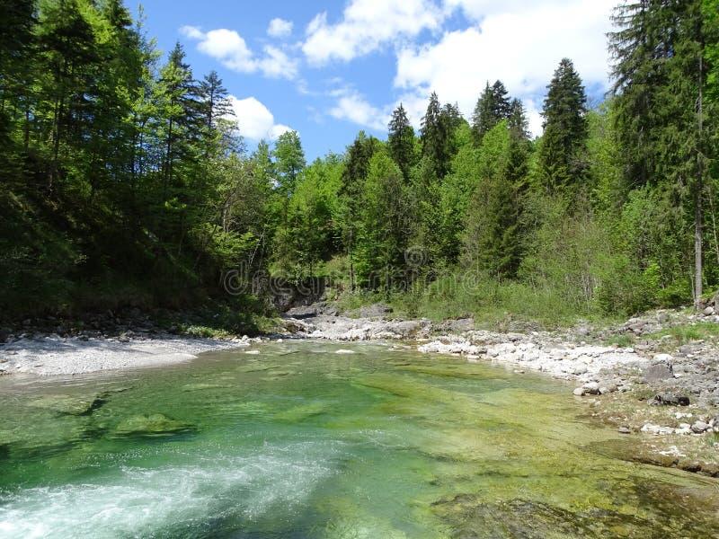 在Sylvenstein湖附近的河Walchen 图库摄影