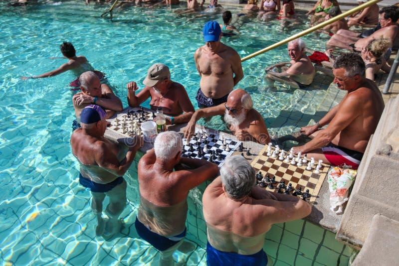 在Szechenyi温泉(巴恩, Therms)的人plaing的棋 免版税库存照片