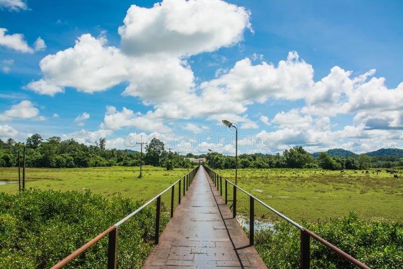 在Takuapa, Phang Nga泰国电烙桥梁地标 免版税图库摄影