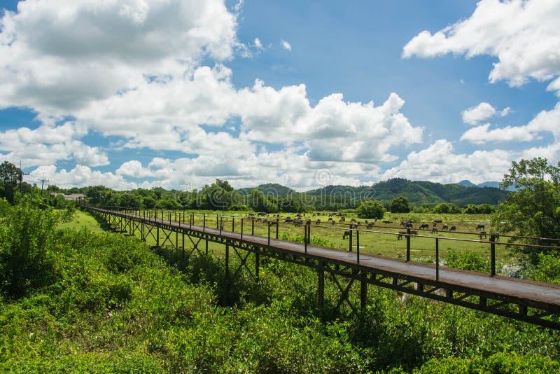 在Takuapa, Phang Nga泰国电烙桥梁地标 图库摄影