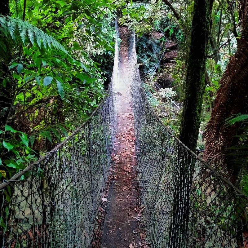 在Taranaki走道的走的平旋桥 库存照片