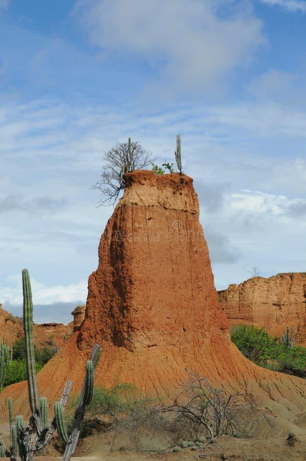 在Tatacoa沙漠的大岩石有大厦的大小和形状的 库存照片