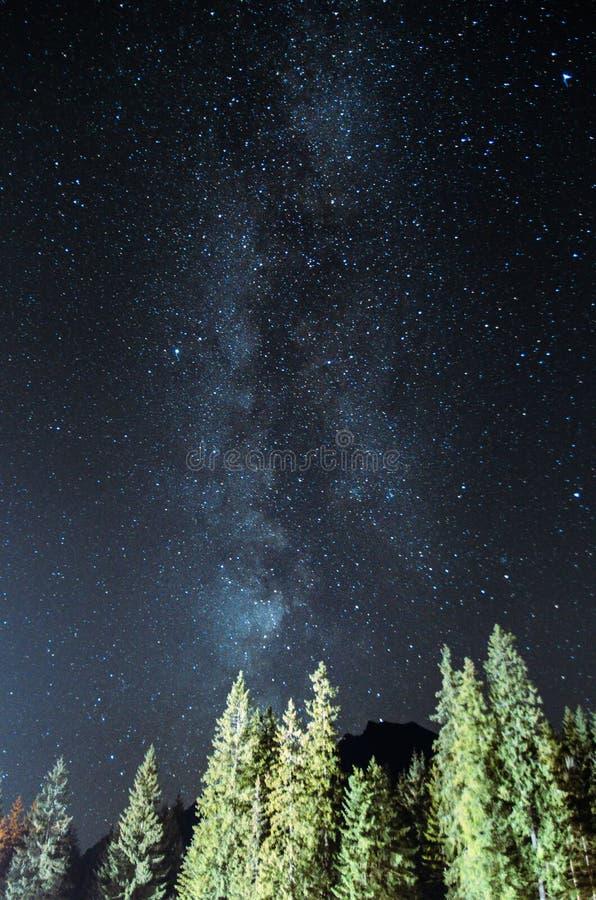在Tatra山上的银河 库存图片