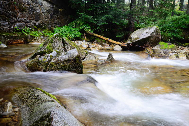 在Tatra山的河流程 免版税库存图片
