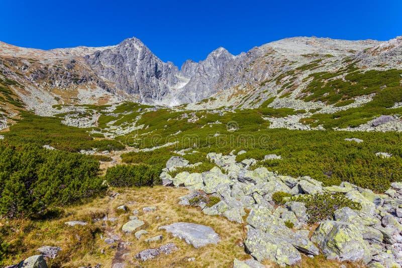 在Tatra山的美丽的景色 免版税库存图片