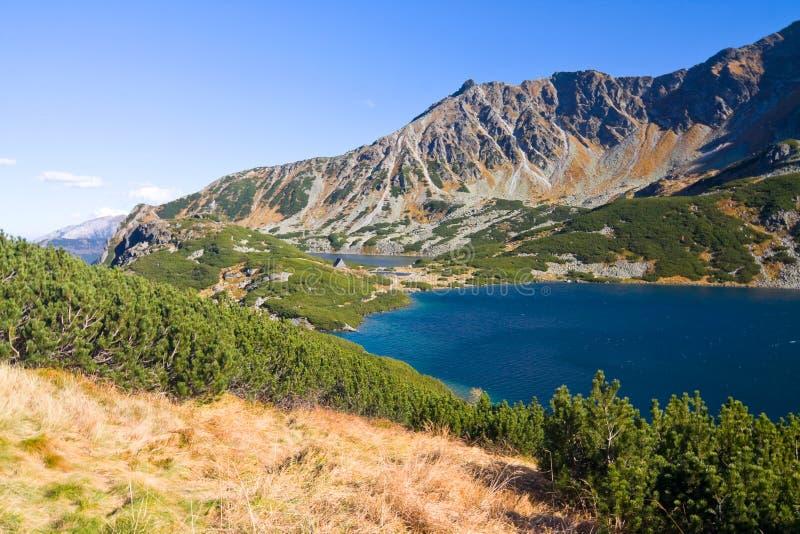 在Tatra山的5个湖谷 图库摄影
