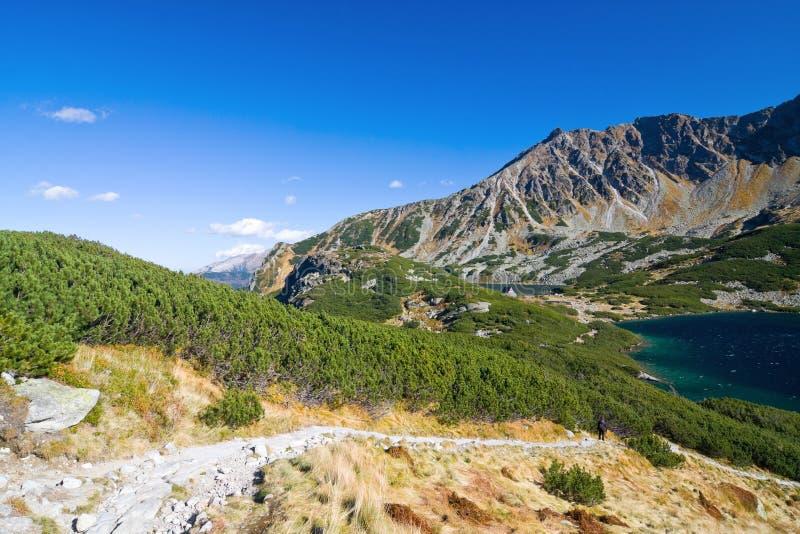 在Tatra山的5个湖谷 库存照片