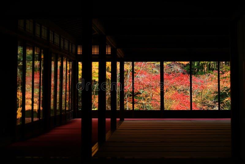 在Tenju-an寺庙,京都的秋天颜色 免版税库存图片