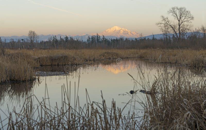 在Tennant湖的贝克山日落的华盛顿州 库存图片