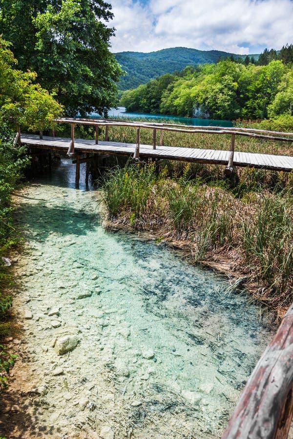 在The Creek明白绿松石湖的桥梁在背景中 Plitvice,国立公园,克罗地亚 库存图片