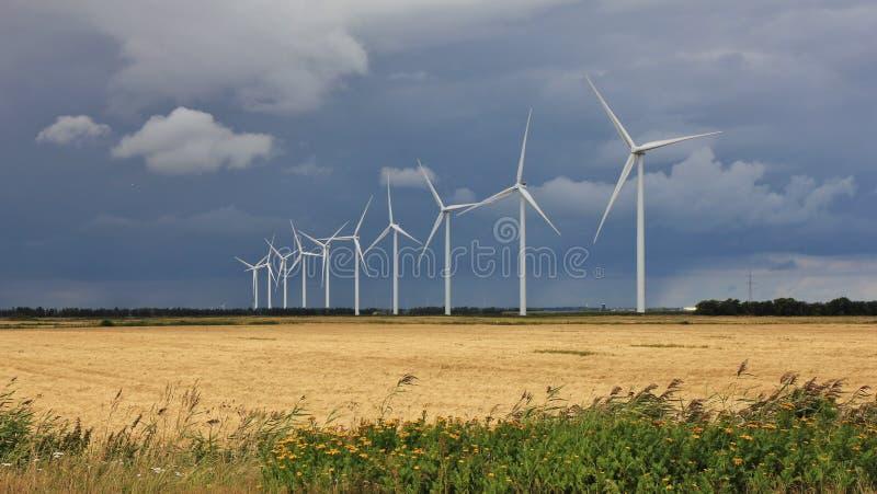 在Thisted,丹麦附近的风力场 免版税图库摄影