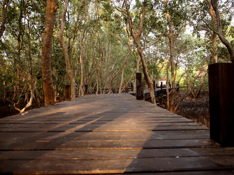 在thung橛皮带, Rayong,泰国的木桥梁 库存照片