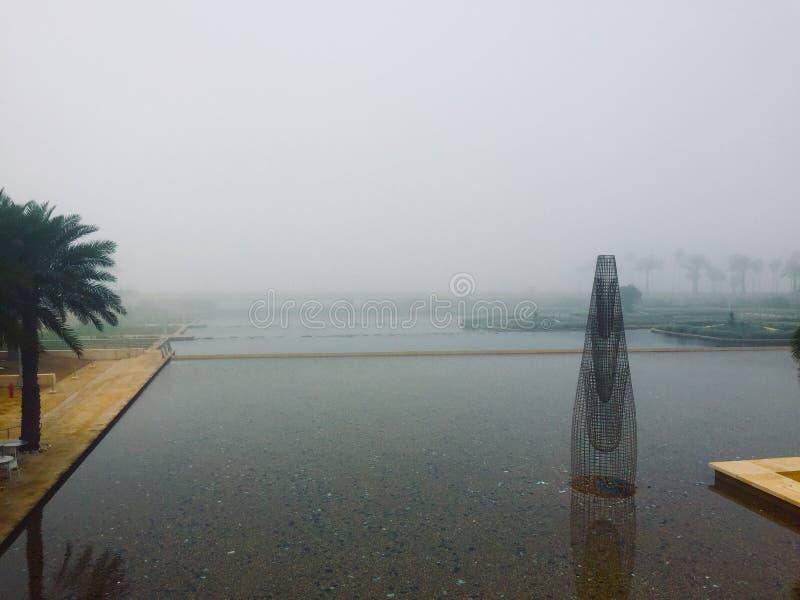 在thuwal海边喷泉的风雨如磐的有雾的天 免版税库存图片