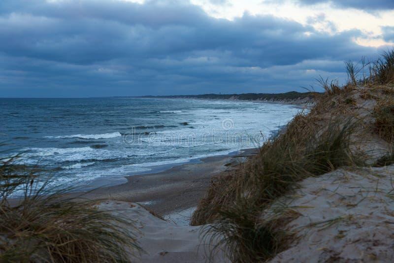 在Thy的Northsea海岸,丹麦 图库摄影