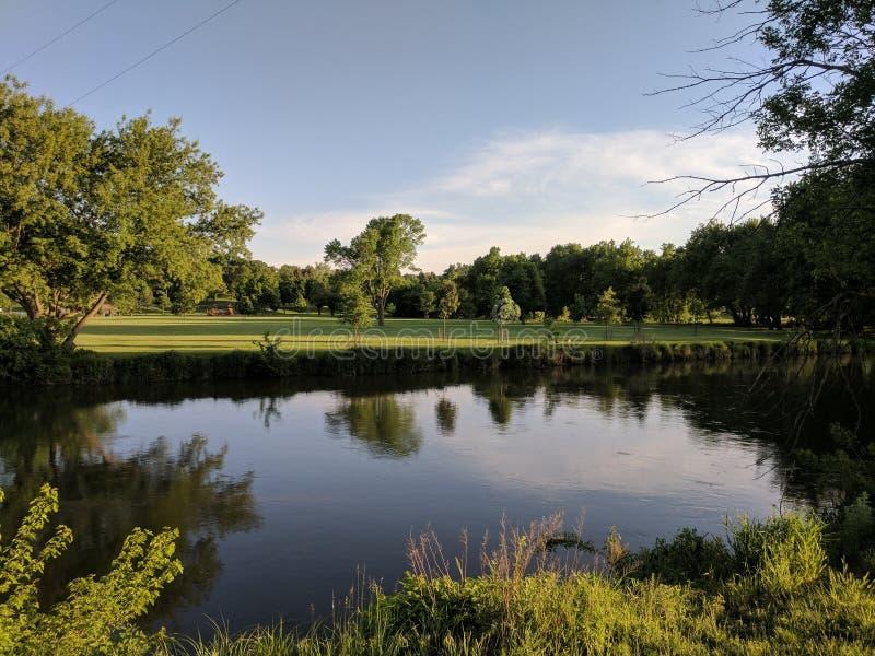 在Tomar公园的大苏族 库存图片