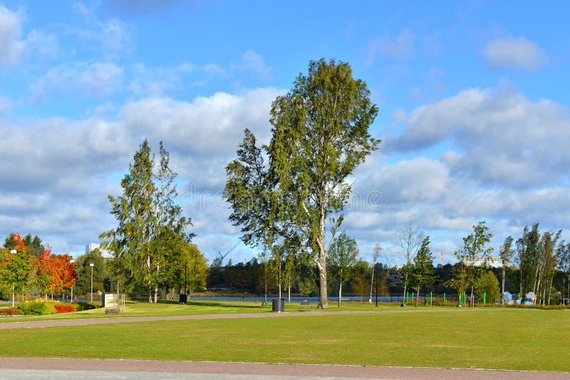在Toolo海湾附近的秋天公园在赫尔辛基的心脏 库存图片