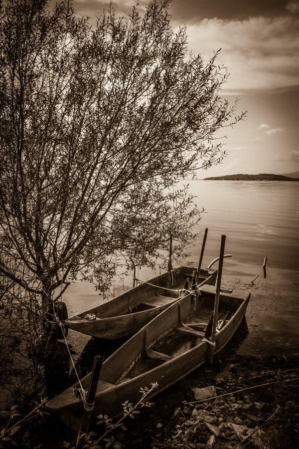 在Trasimeno湖的两条小船 库存图片