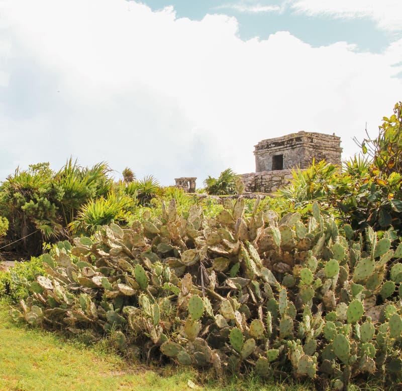 在Tulum废墟的Tulum海滩,墨西哥 图库摄影
