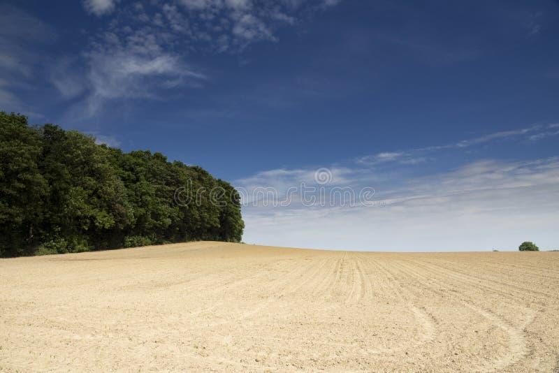 在Ubachsberg附近的风景 免版税库存图片