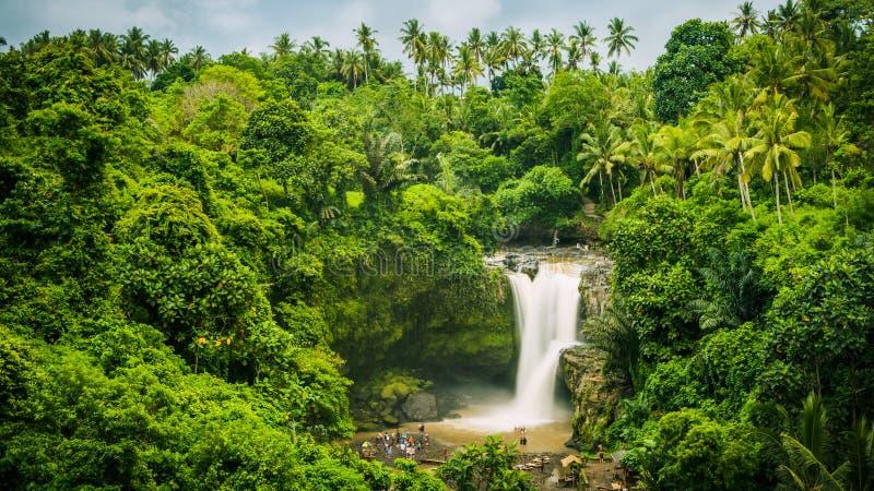 在Ubud附近的令人惊讶的Tegenungan瀑布在巴厘岛,印度尼西亚 免版税库存图片