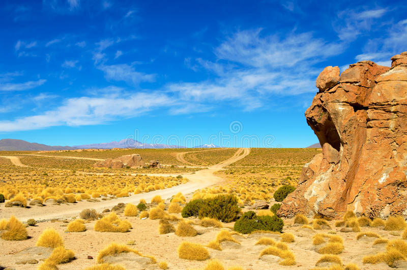 在Uyuni玻利维亚附近的土路 库存照片
