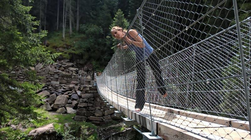 在val di fiemme的西藏桥梁在la Scofa 库存图片