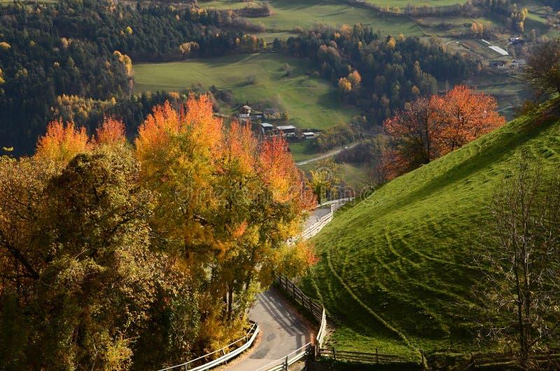 在Villandro村庄附近的美好的秋天场面 特伦托自治省女低音阿迪杰,波尔查诺,意大利 图库摄影