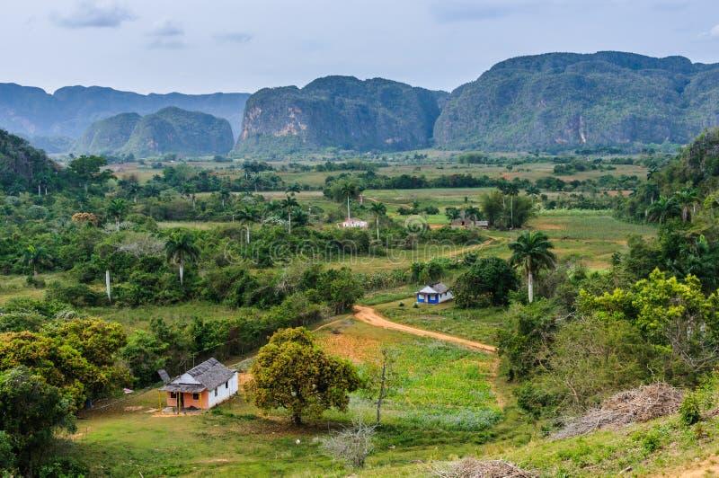 在Vinales谷,古巴的全景 库存图片